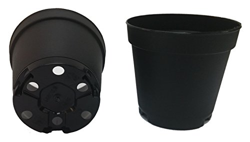 40 NEW 2 Inch Plastic Nursery Pots ~ Pots ARE 2 Inch Round At the Top and 1.9 Inch Deep Color: Black (2 Round Pots)