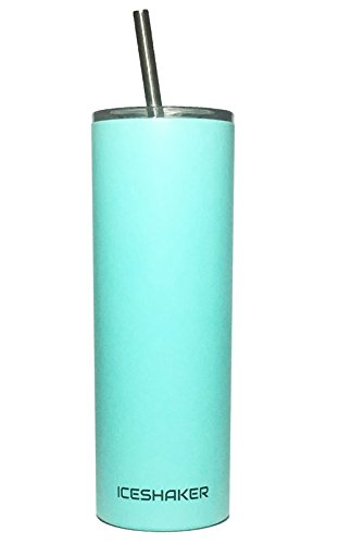 20 oz Stainless Steel Skinny Tumbler with Lid and Straw (Matte Mint)
