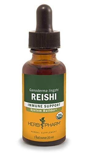 Herb Pharm Reishi Mushroom Liquid Extract Immune System Builder – 1 Ounce For Sale