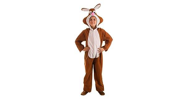 El Rey del Carnaval Disfraz de Conejo Marrón para niños: Amazon.es ...