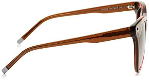 Eye Marrone 56 Cat Klein Gafas para de Marrón Sol Mujer Rosa Calvin UFREqw1