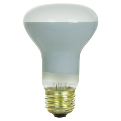 Sunlite 45R20/FL Incandescent 45-Watt, Medium Based, R20 Reflector Bulb, (120 Volt R20 Medium Base)