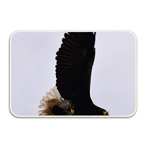 Sandy Ricardo Collection Rectangular Welcome Doormat (Machine-Washable/Non-Slip) Eagle Wingspan Indoor Rug
