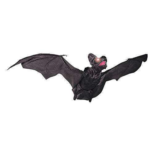 WMU Animated Flying