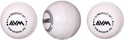 AVM Windball 3 Cricket Ball   Size: Standard,  Pack of 3