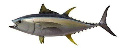 Tuna Wall Mount Fish Replica, Fishing Wall & Coastal Decor from Mount This Fish Company