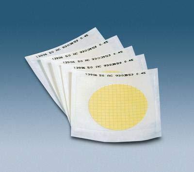 Pack of 100 AHLSTROM FILTRATION 760181 Nylon Non-Sterile Membrane 47 mm Diameter 0.45 /µm Pore Size
