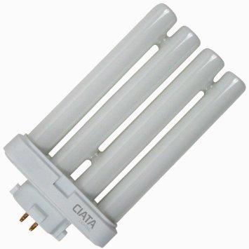 Generic FML2765 27 Quad Tube Compact Fluorescent Light Bulb - 2 Pack