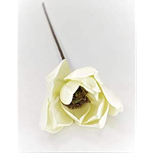 "Silvercloud Trading Co. 1 PC -24"" Magnolia Flower Bloom Stem - Cream Flower - Sold Individually - Vase Filler Rustic Farmhouse Wedding Floral Display 6"
