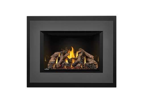 Napoleon Oakville Gas Fireplace Insert GDI3 by Napoleon