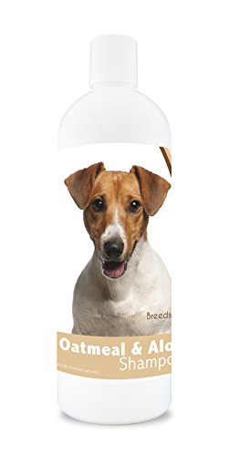 Healthy Breeds Dog Oatmeal Shampoo with Aloe for Jack Russell Terrier - Over 75 Breeds - 16 oz - Mild and Gentle for Itchy, Scaling, Sensitive Skin - Hypoallergenic Formula and pH Balanced