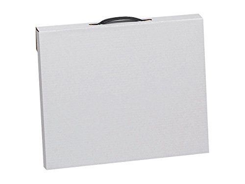 Flipside Art Portfolio Storage Case, Corrugated, 23 x 31 Inches, White - 1398167 ()