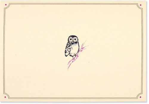 Owl Portrait Note Cards (Stationery, Boxed Cards)