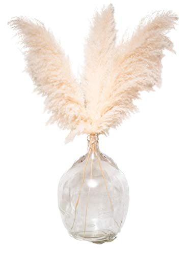 Decor Unicorn Large Pampas Grass Plants - 3 Stems of Fluffy Natural Dried Pampas Grass Decor-Tall Pampas Grass for Floor Vase
