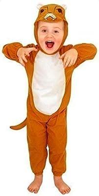 Fancy Me Niña Niño Pequeño León Zoo Animal Disfraz Edad 3 años ...