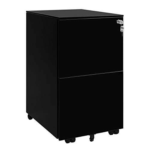 DEVAISE Locking File Cabinet, 2 Drawer Rolling Metal Filing Cabinet, Fully Assembled Except Wheels, Black