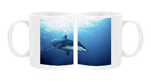 Photo Mug of Female Silvertip Reef Shark - these beautiful sharks grow to 3 plus meters (Silvertip Reef Shark)