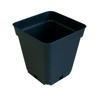 500 NEW GREEN Elite Square Pot ~ Pots are 3 1/2'' W x 3 1/2'' L x 3 1/2'' H by Elite