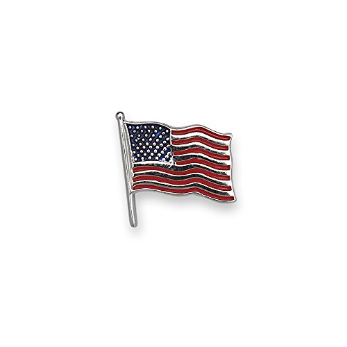 JewelryWeb Solid 14k Yellow or White Gold Enamel American Flag Lapel Pin for Men (White-Gold)