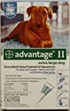 Advantage II Blue 4-Month Flea Control for Extra Large Dogs Over 55 lbs — 4 Tubes, My Pet Supplies