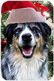 Australian Shepherd Blue Merle Tempered Cutting Board Christmas