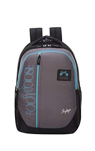 Skybags Virgil 28 Ltrs Grey Laptop Backpack