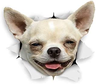 Winston & Bear Perro 3D pegatinas - Pack 2 - feliz Chihuahua para ...