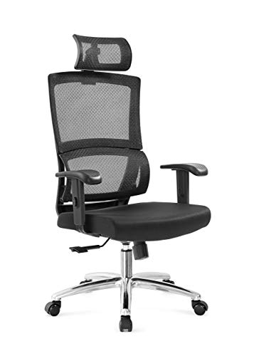 Ticova Ergonomic Office Chair High Back Mesh Chair with Adujustable  Headrest and Armrest – Unique Spring Lumbar Support with Thick Shaping Foam Seat Cushion – Reclinable Desk Chair Computer Chair