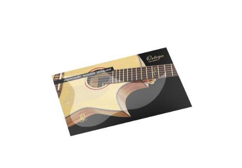 Ortega Guitars OERP Electrostatic Transparent Pickguard Cover Foile (Removable Pickguard)