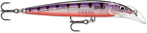 (Rapala Scatter Rap Deep Husky Jerk 10 Glass Perch SCRDHJ10GPP: Scatter Rap Deep Husky Jerk 10 Glass Perch, Purple)