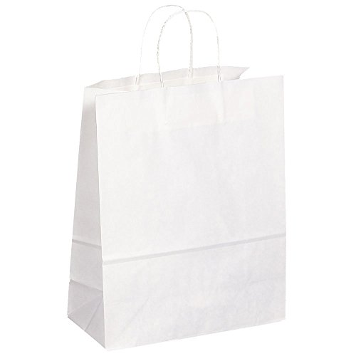JAM Paper Shopping Bag - Large - 13'' x 6'' x 16'' - White Kraft - 250/pack by JAM Paper