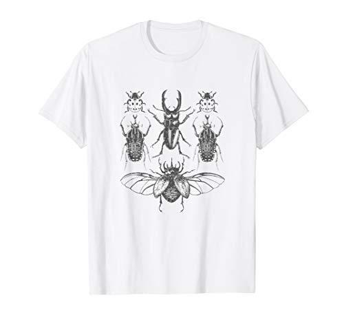 Insect Bug Collection Shirt Cicada Stag Beetle Ladybug Tee -