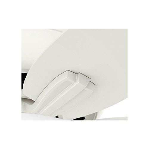 Hunter Fan Company 51080 Newsome Ceiling Fan with Light, 42''/Small, Fresh White by Hunter Fan Company (Image #6)