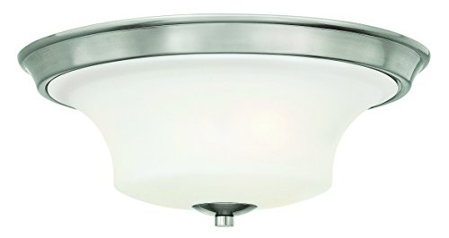 Hinkley Lighting 4631BN Brantley 3-Light Outdoor Light, Brushed Nickel