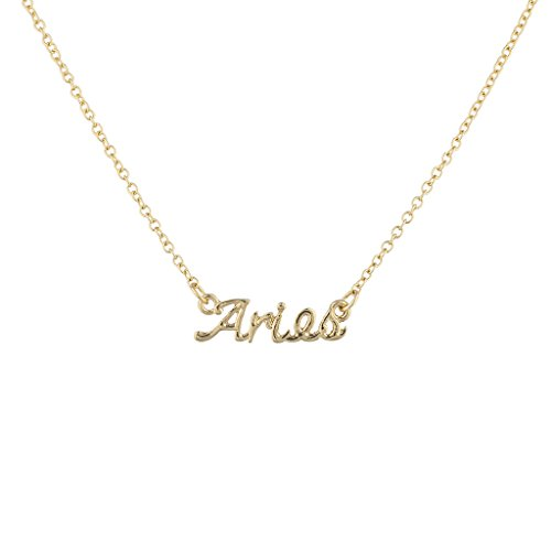 Lux Accessories Astrological Nameplate Necklace