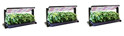 (AeroGarden LED Grow Light Panel (45w) (Pack of 3))