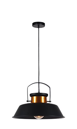 Black And Copper Pendant Light in US - 3