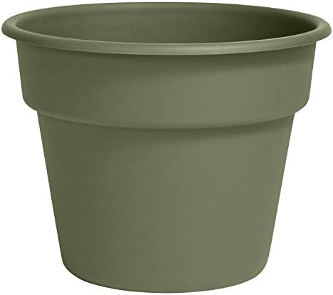 Bloem DC12-42 Dura Cotta Planter, 12-Inch, Living Green