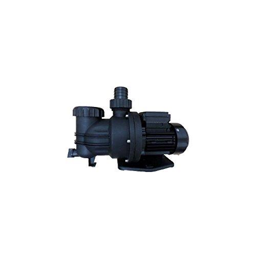 Spa, Bath & Fountain Centrifungal Pump .3HP 1/3HP 115V 250W 120V 60Hz 2.5Amps by Leo