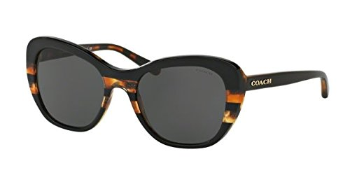 COACH Women's 0HC8204 52mm Black Tortoise Varsity Stripe/Dark Grey Solid - Coach Case Sunglasses