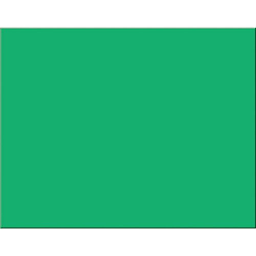 Pacon 54661 Peacock Four-Ply Railroad Board, 22 x 28, Holiday Green (Case of 25) by Pacon