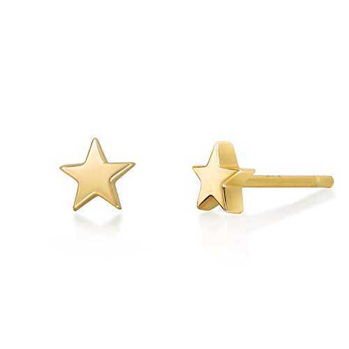 14k Gold Leaf Earrings - S.Leaf Minimalist Star Earrings Studs Sterling Silver 14K Gold Plated Stud Earrings Minimalism Dainty Earrings (star-gold)