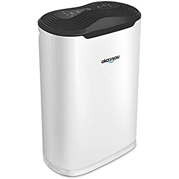 """Okaysou AirMax8L 19.4"""" 5-in-1 Large Room Air Purifier for Home, True HEPA Filter, Odor Allergies Remover for Smoke, Dust, VOCs, Pollen, Pet Dander, Mold, ..."""