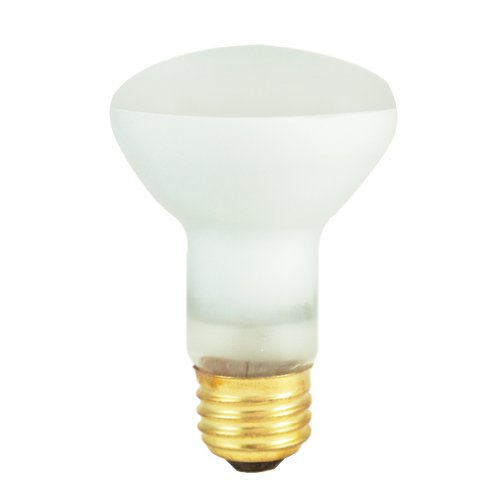 45W R20 Indoor Reflector Incandescent Bulb for Spot [Set of 10] (Spot Reflector Bulb)