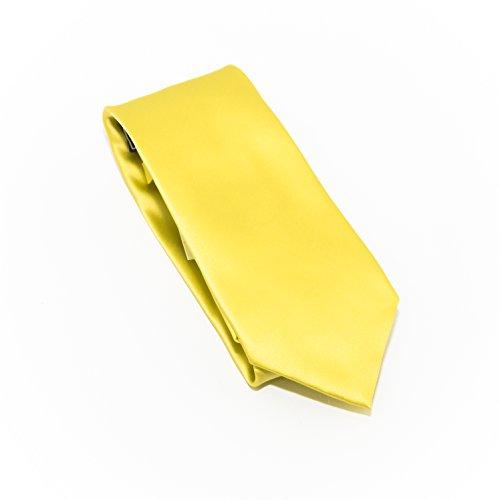 Solid Custard Satin Look 100% Silk Necktie Set with Pocket ()