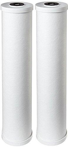 """Pentek RFC20-BB Carbon Filter Cartridge, 20"""" x 4-1/2"""" (Kitbag of 2)"""