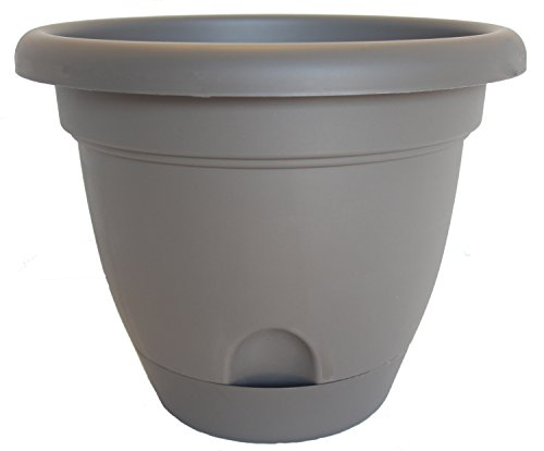 Bloem Living LP0860 Lucca Self-Watering Planter, 8-Inch, Peppercorn - Apollo Plastic Deck Planters