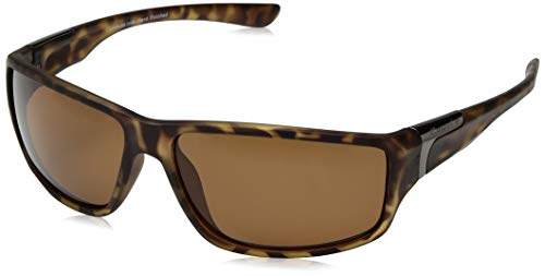 80247d3a335 Coyote eyewear the best Amazon price in SaveMoney.es