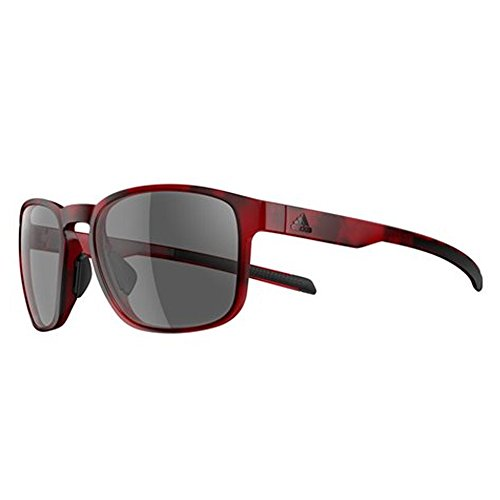Adidas Protean Sunglasses 2018 Red Havanna Frame/Gray Lens