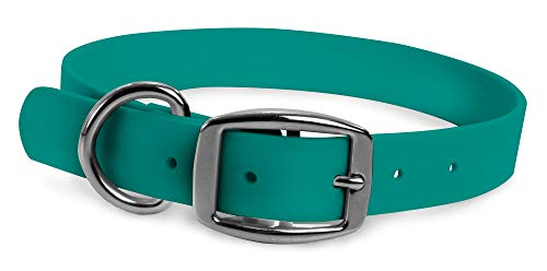 Wearhard Waterproof Dog Collar with Metal Buckle - No Stink, Non-Fade, Easy to Clean, Adjustable (Medium, Teal - Standard)